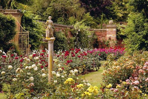 The Walled Rose Garden At Hever Castle Is Designed To Deliver What Head Gardener Neil Miller Calls Knockout Impact On Entering 1 6ha 4 Acre