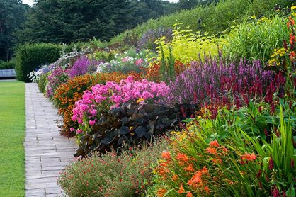 The Mixed Borders at RHS Garden Wisley