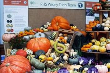 Wisley trial team's squashes