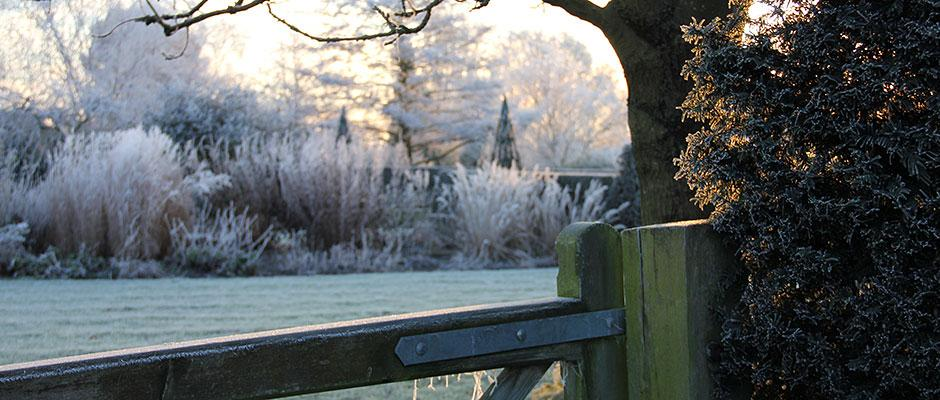 Hilltop Garden gate in the frost