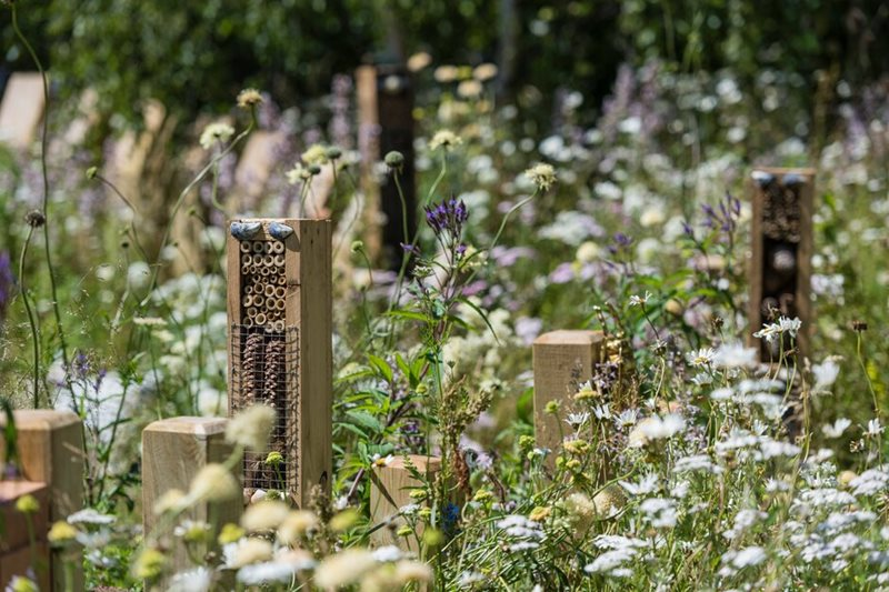 Bug hotels on the BBC Springwatch Garden