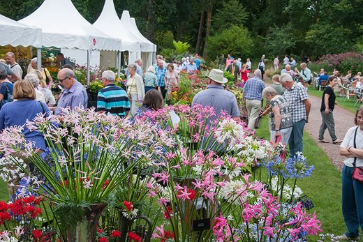 Pictures Of A Garden rhs garden wisley flower show| days out & events in surrey / rhs