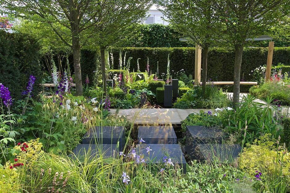 Rhs chelsea flower show 2015 rhs gardening - Chelsea garden show ...