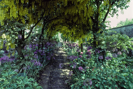 Shady walkway at Barnsley House, Gloucestershire