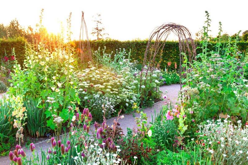 Garden Design Cottage Plants, How To Make A Cottage Garden Border