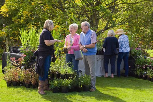 Visitors at the autumn plant festival