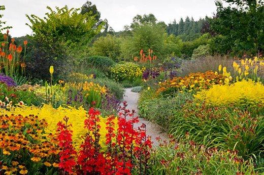 Rosemoor Garden RHS Flower Show