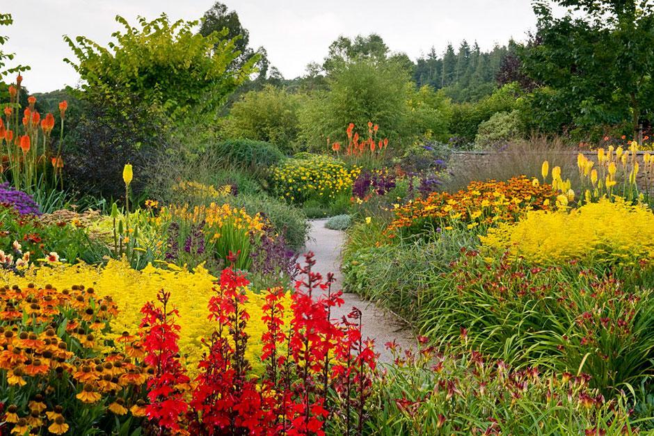 View Our Galleries From Rhs Garden Rosemoor Rhs Gardening
