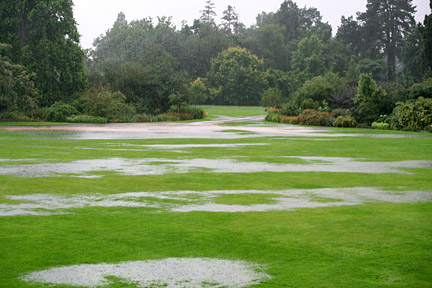 Waterlogged lawn.