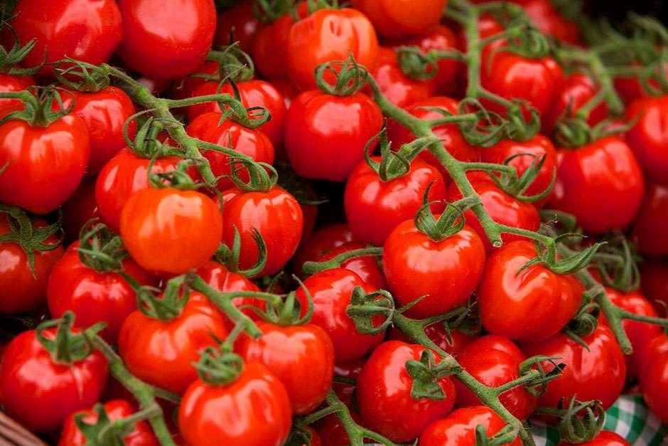 View all Tomatoes at the RHS Plants Shop