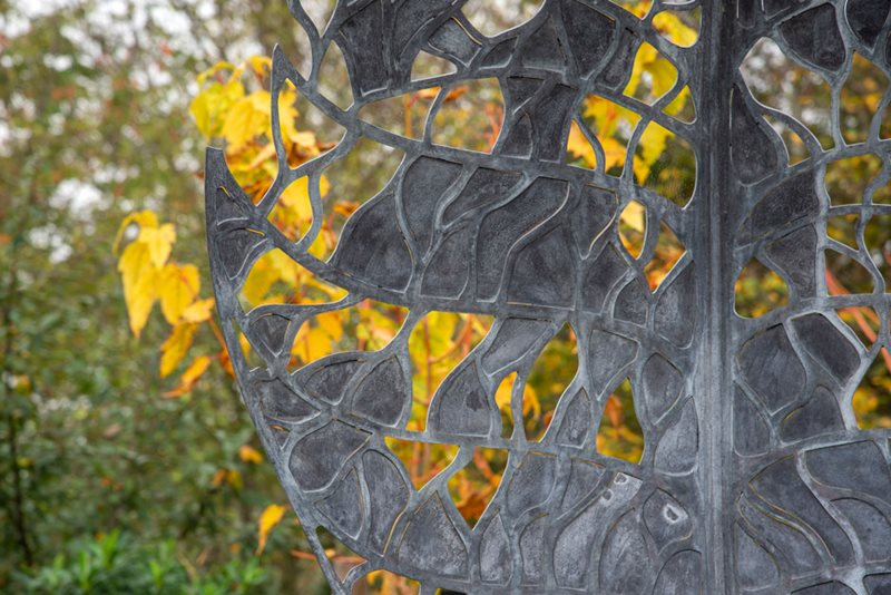 RHS Hyde Hall Winter Garden sculpture and autumn colour