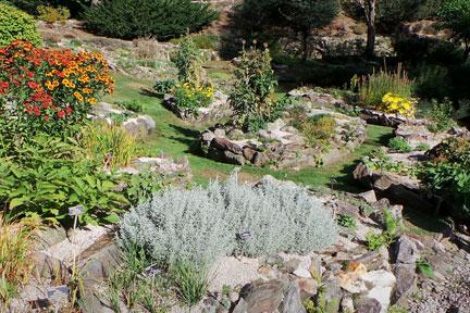 Rock gardening / RHS Gardening