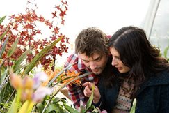 Couple looking at orchids
