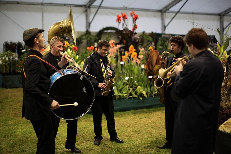 Band in Floral Marquee