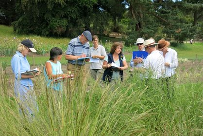 Assessing the Stipa trial