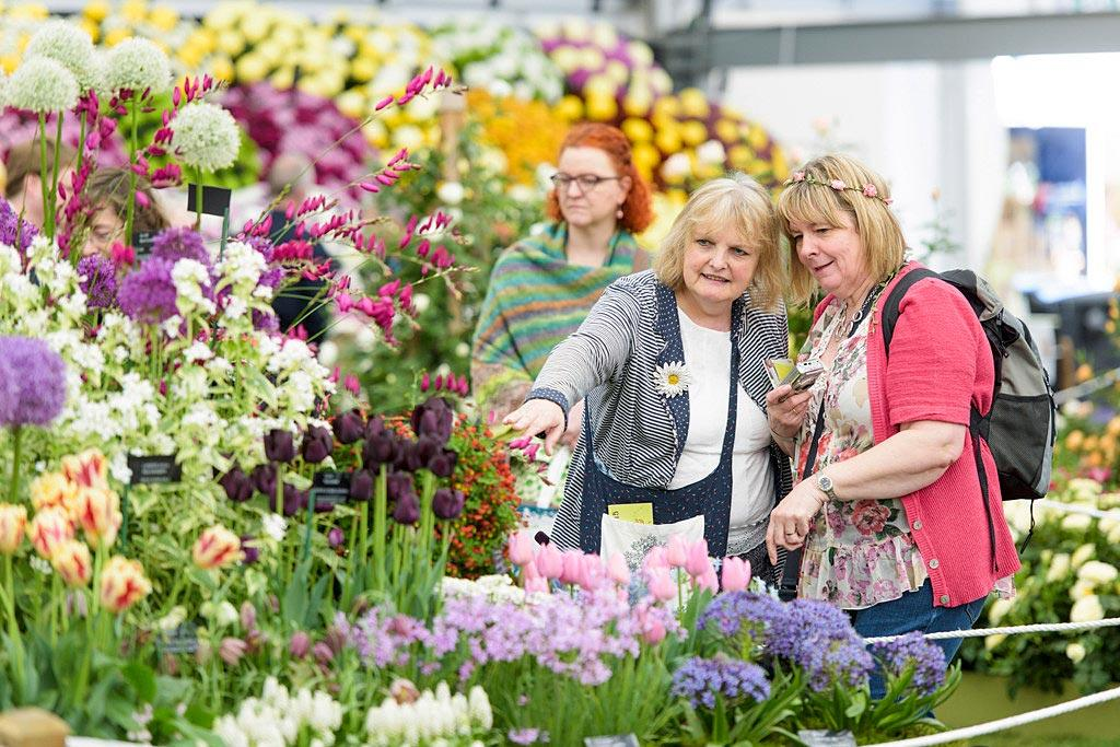 Visitors looking at a flower display