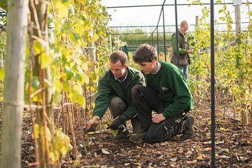 Practical gardening training courses at rosemoor for Gardening qualifications