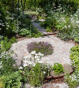 The Health and Wellbeing Garden paving