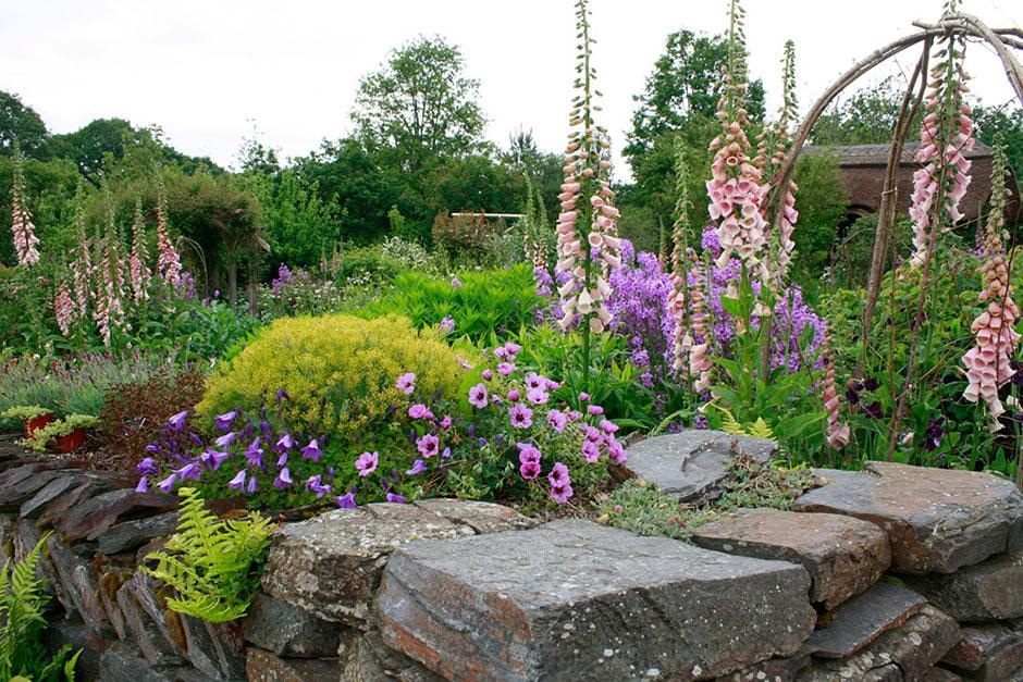 View our galleries from RHS Garden Rosemoor / RHS Gardening