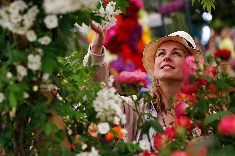 rhs chelsea flower show 2017 gardens rhs gardening. Black Bedroom Furniture Sets. Home Design Ideas