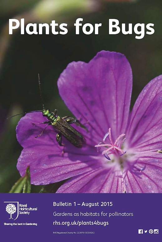 RHS Plants for Bugs - Bulletin 1 (opens in a new window)