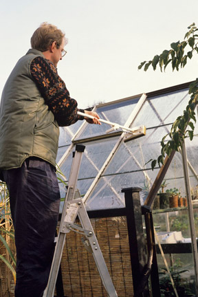 Greenhouse cleaning / RHS Gardening