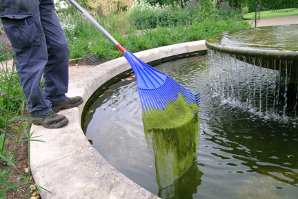 Removing blanket weed from a pond. Credit: RHS/Advisory.