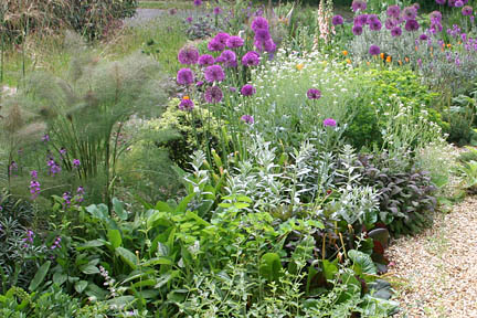 With careful plant choose it is possible to produce lush-looking gardens even on dry soils. Credit: RHS/Advisory.
