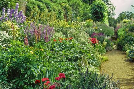 Perennial Borders Choosing Plants Rhs Gardening