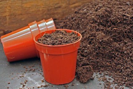 Using peat-free compost for potting. Credit:RHS/Advisory.