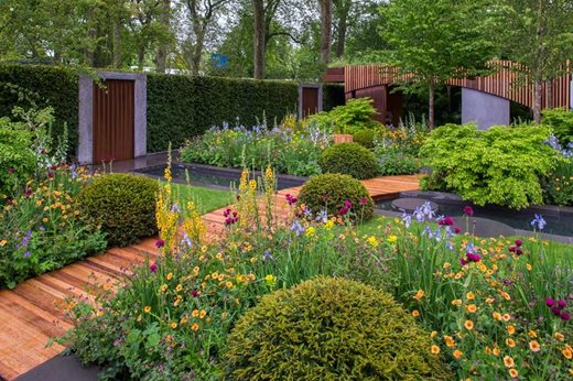 New show gardens at rhs chelsea flower show 2015 rhs for Chelsea flower show garden designs