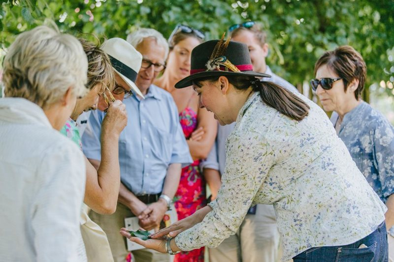Learn how to forage at RHS Hampton Court Palace Garden Festival / RHS Gardening
