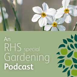 An RHS special Gardening Podcast