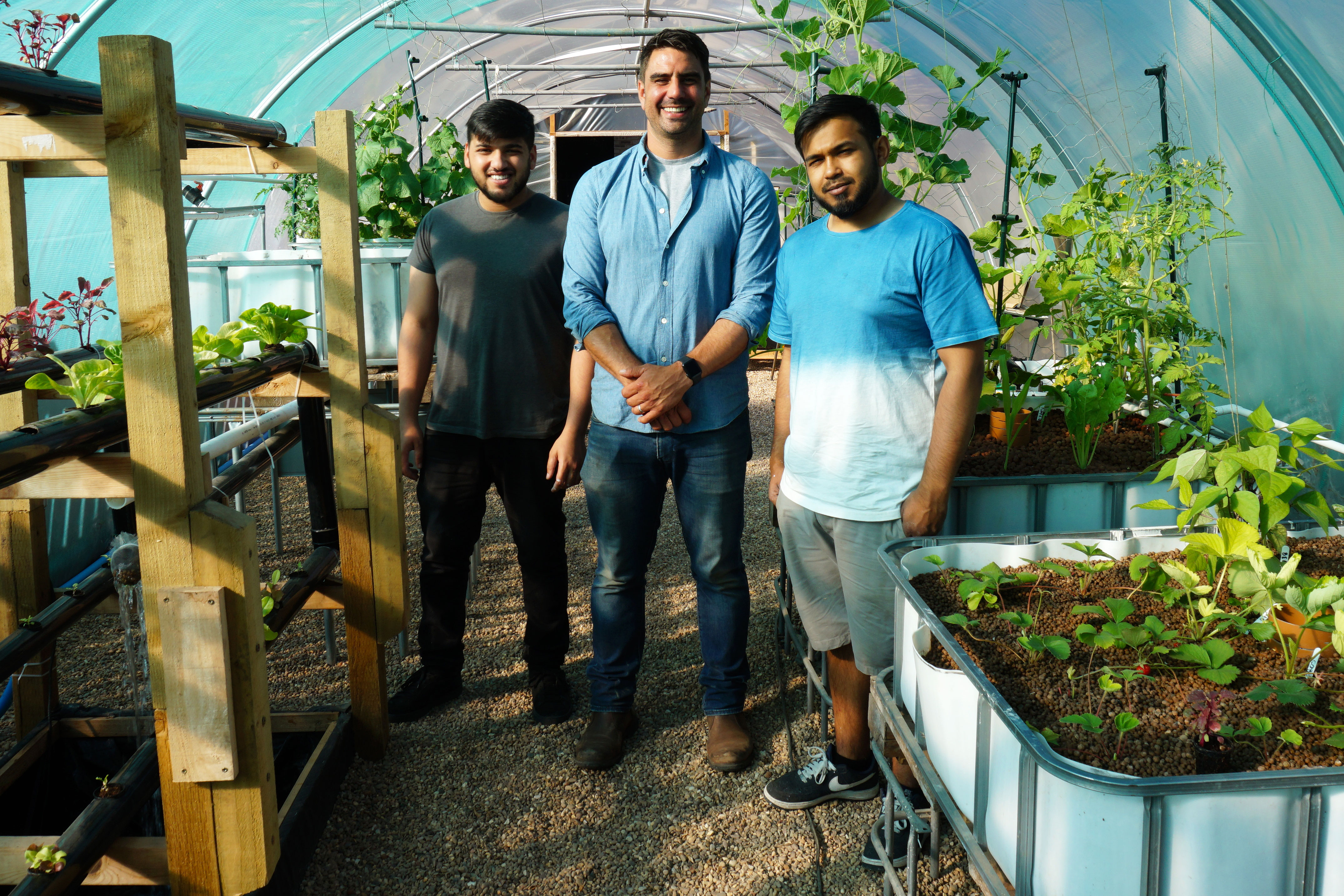 Volunteers in Evington work in a poly tunnel