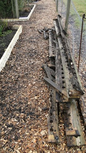 Replacing rotten timber edging boards at Deers Farm