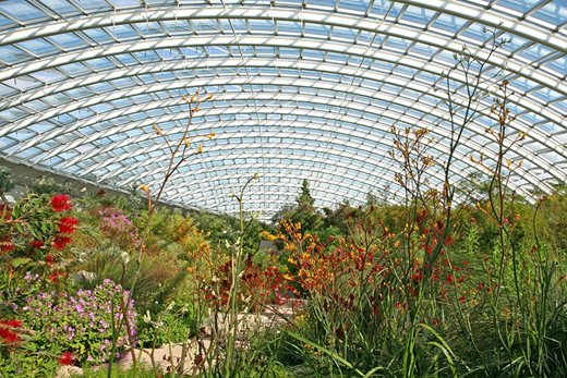 Interior of the Great Glasshouse