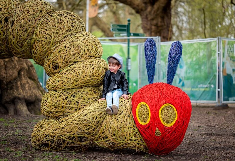 The Very Hungry Caterpillar family trail