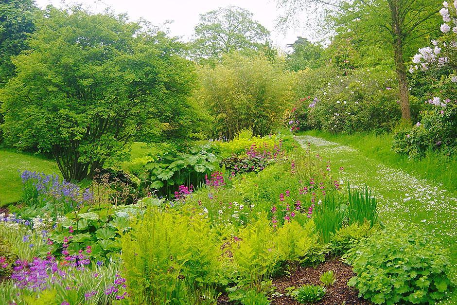 Place For Plants: East Bergholt Place Garden