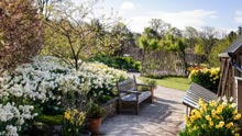 Visit Harlow Carr in spring