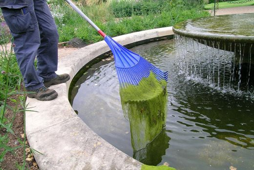 Clearing blanket weed from a pond