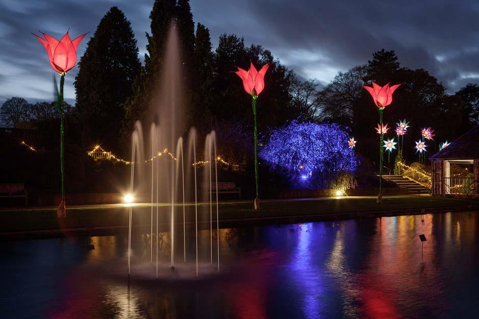 Christmas Glow at Wisley