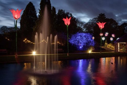 Christmas Glow lights at Wisley