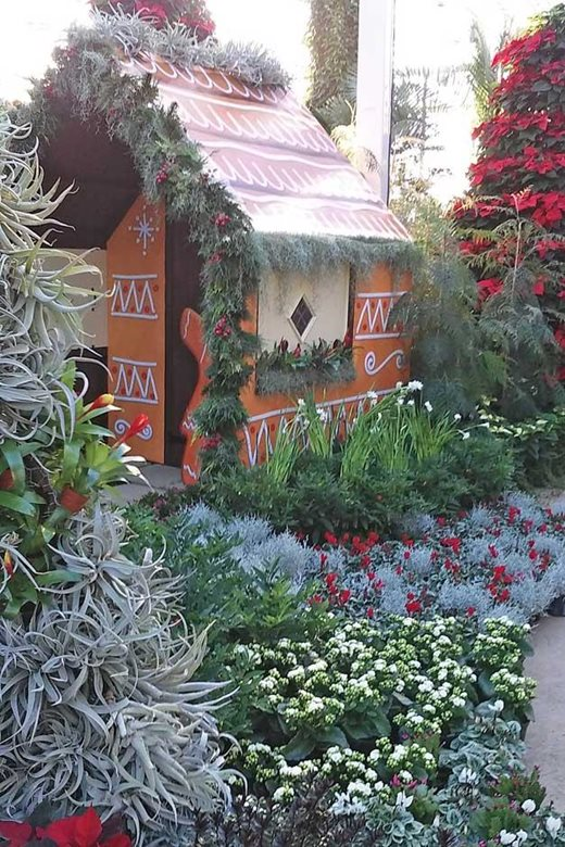 Gingerbread house and bromeliad tree in The Glasshouse