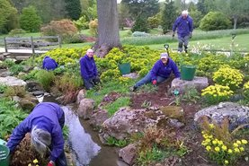 Volunteers working hard at RHS Garden Harlow Carr