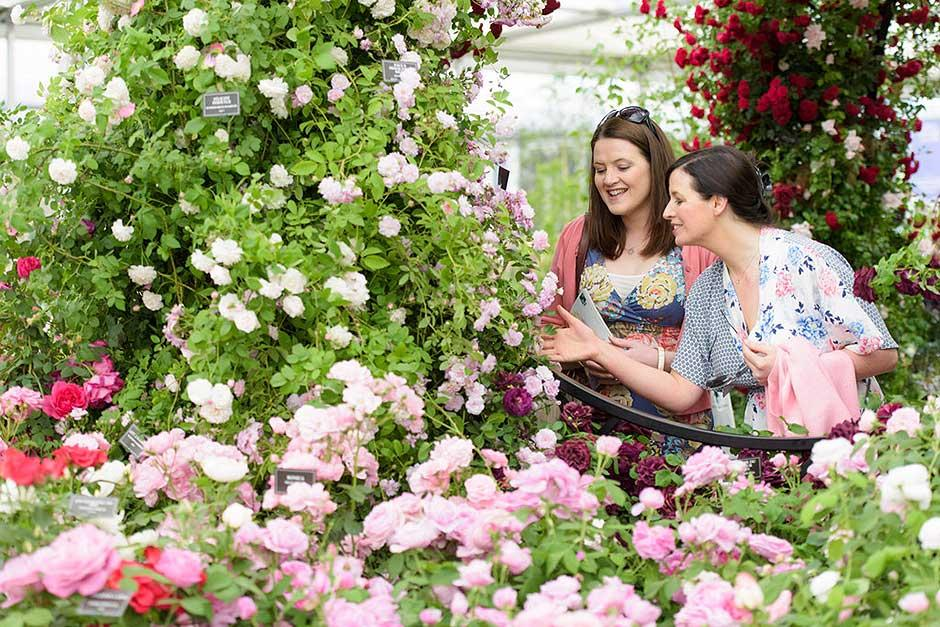 Visitors at the Chelsea Flower Show