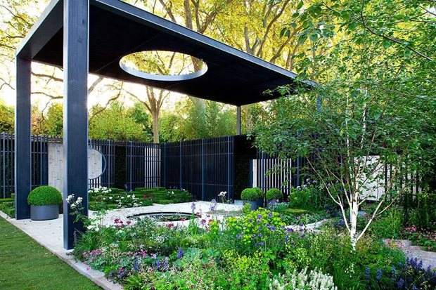 RHS Tips On Styling Your Contemporary Garden / RHS Gardening