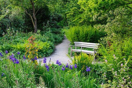 the wild garden in spring restoration in the heart of wisley - Wild Garden