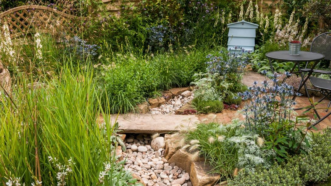 See The Drought Garden At RHS Hampton Court Palace Flower Show ...