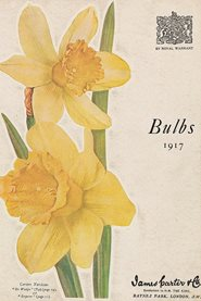 1917 bulb catalogue of James Carter & Co. The daffodils illustrated are Narcissus 'Sir Watkin' and N.'Emperor'