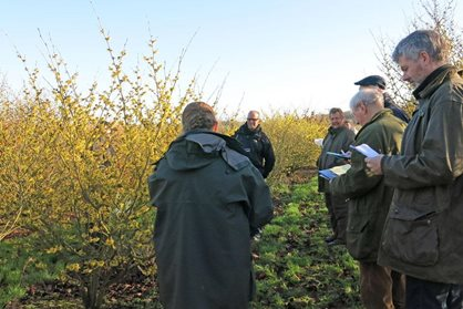 Assessing the RHS plant trial at Witch Hazel Nursery